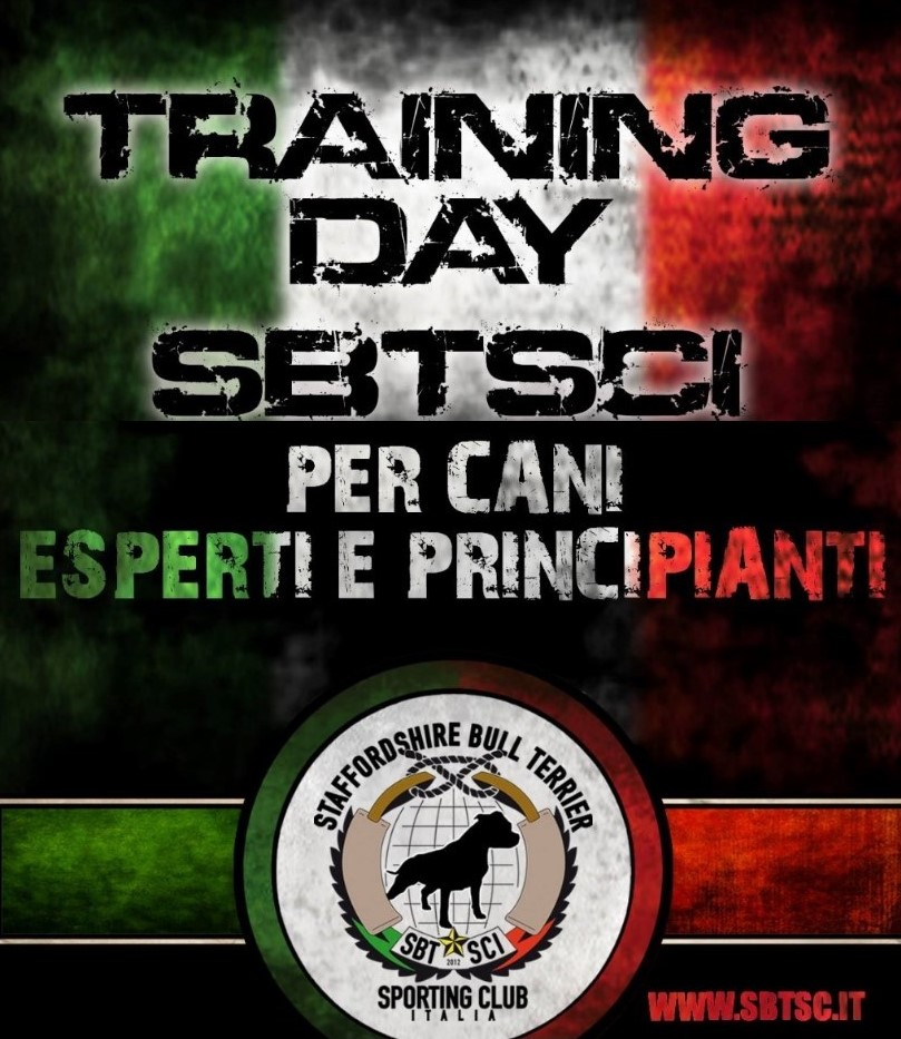training day (2)